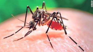 Zika Virus Pest Control