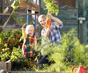 Some Neat And Natural Ways To Protect Your Plants