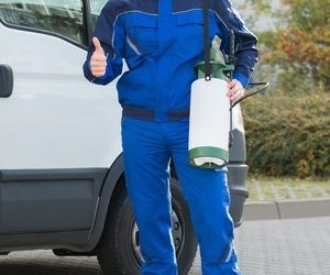 Need A Pest Control Expert? Here Are Some Tips