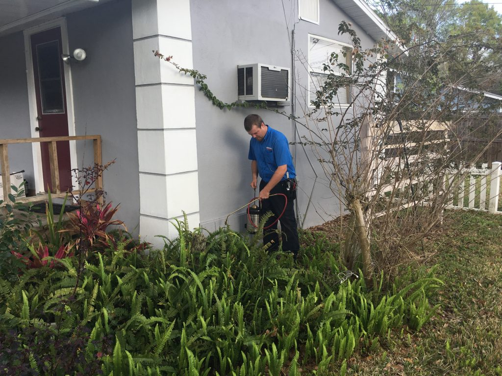 Exterior Pest Barrier by Emergency Pest Patrol